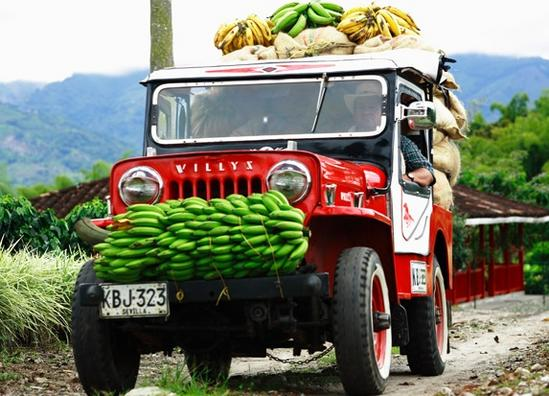 Jeep Willys eje cafetero