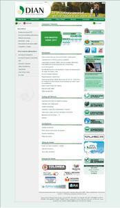 Vista sitio oficial de www.dian.gov.co, RUT.