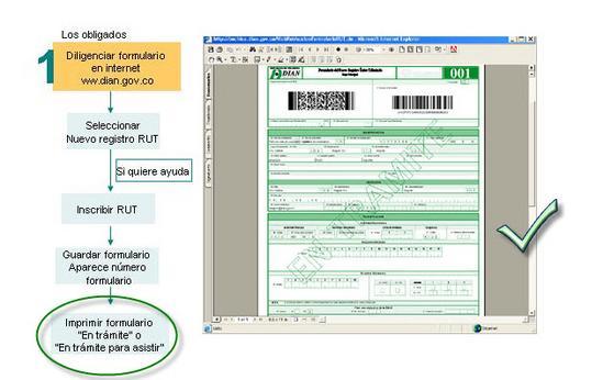 proceso inscripcion rut colombia dian