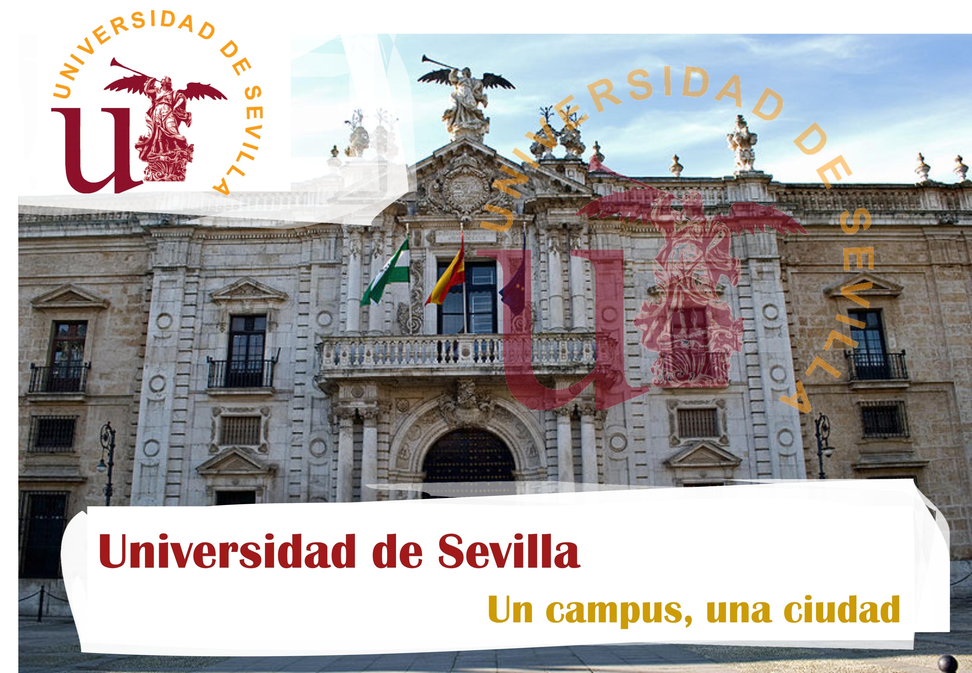 Universidad de Sevilla. Un campus, una ciudad