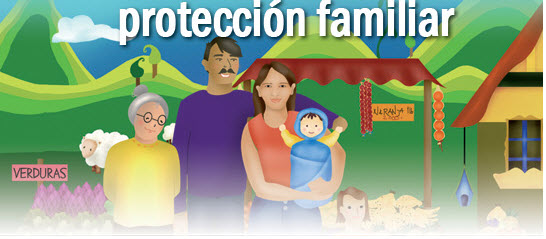 Ley 311 de 1996 en colombia