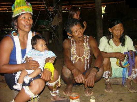 Ley de proteccion de las lenguas indigenas