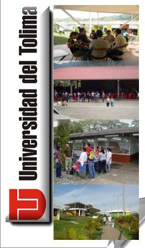 ley 221 de 1995, universidad del tolima