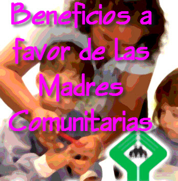 Ley General de los Beneficios a Favor de las Madres Comunitarias