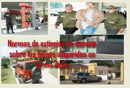 Normas de extinción de dominio sobre los bienes adquiridos en forma ilícita