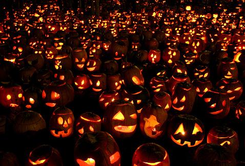 Halloween  imágenes Calabazas
