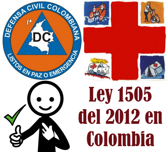 La Ley 1505 del 2012 en Colombia