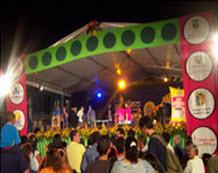 Concurso Nacional de Música de Carrillera en Sevilla, Valle 2012