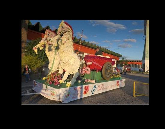 Desfile de Carrozas
