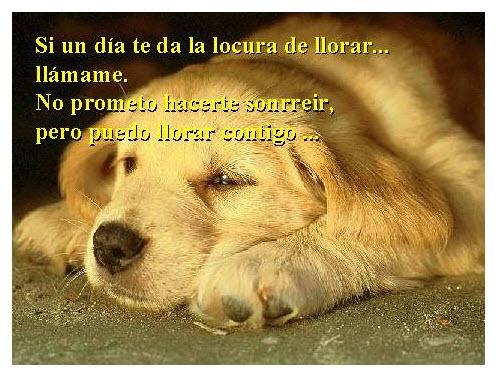 Imagen Para Facebook Dia de Amor y Amistad