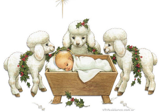 novena de aguinaldos día quinto 20 de diciembre