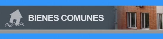 Rus registro unico de seguros de bienes comunes.