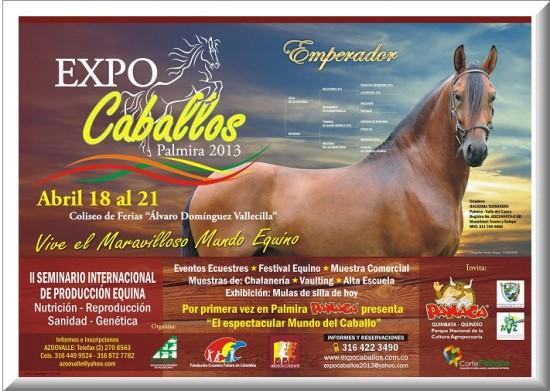 Cartel Oficial ExpoCaballos en Palmira 2013