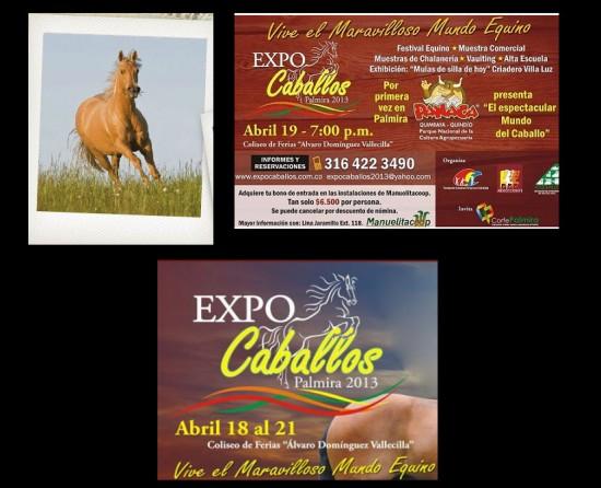 ExpoCaballos 2013