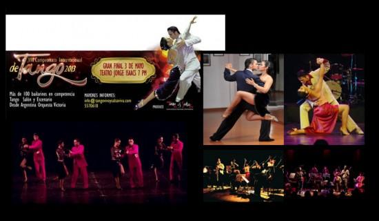 Festival y Campeonato Internacional de Tango  2013