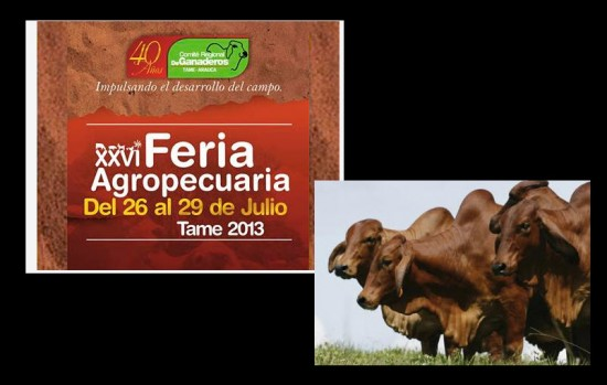 Feria Agropecuaria 2013