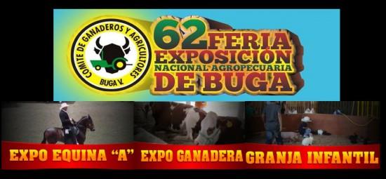 Feria de Buga 2013