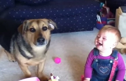 Un perrito come burbujas y mira la reacción del bebé