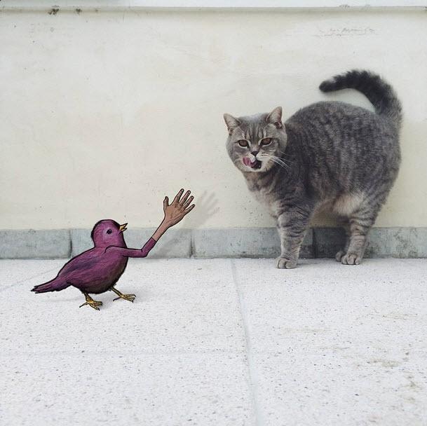 Eliska-Podzimkova-fotografias-e-ilustraciones-hacen-arte-gato
