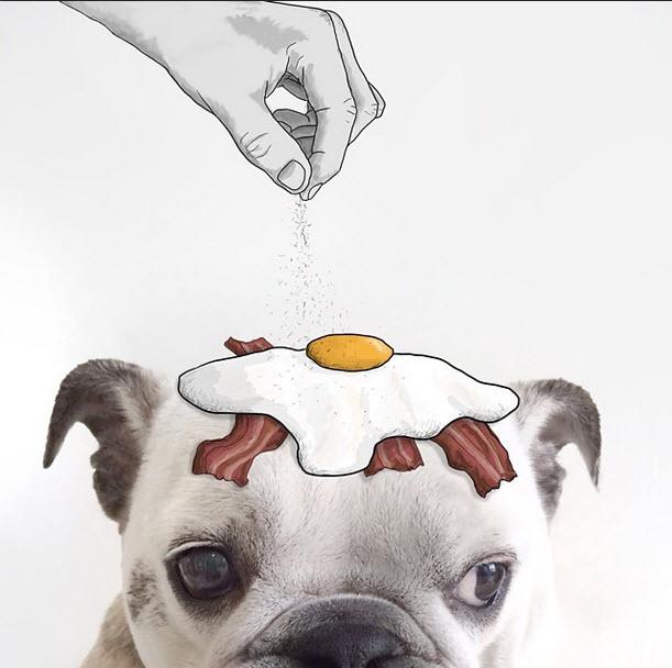Eliska-Podzimkova-fotografias-e-ilustraciones-hacen-arte-huevo-con-sal