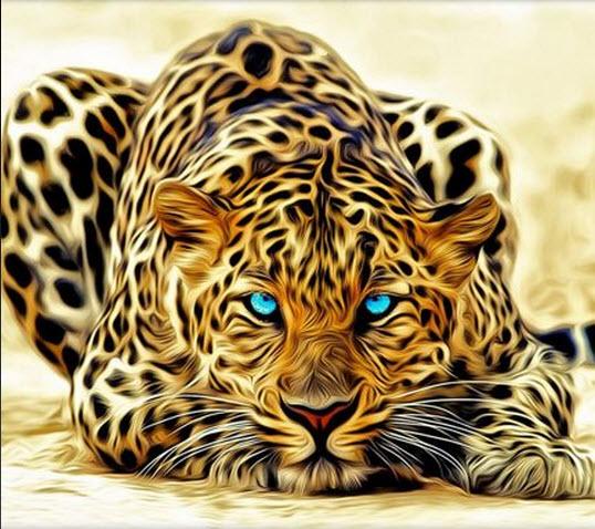 Descargar imagenes de fondo para whatsapp - Leopard