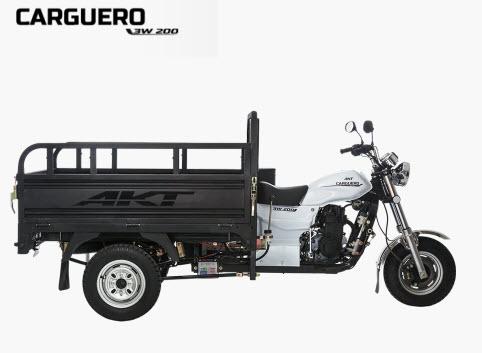 Ficha técnica: AKT Carguero 3w 200