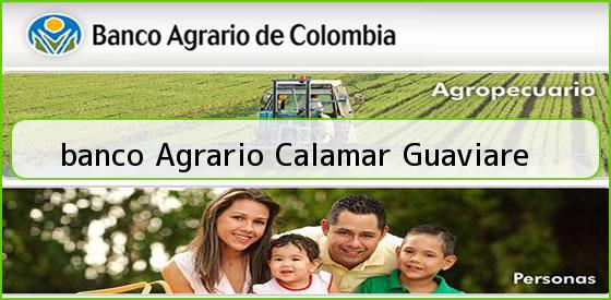 <b>banco Agrario Calamar Guaviare</b>