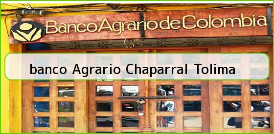 <b>banco Agrario Chaparral Tolima</b>