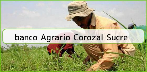 <b>banco Agrario Corozal Sucre</b>