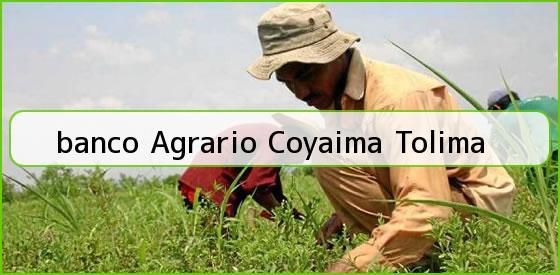 <b>banco Agrario Coyaima Tolima</b>
