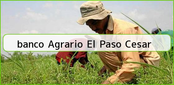 <b>banco Agrario El Paso Cesar</b>