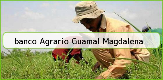 <b>banco Agrario Guamal Magdalena</b>