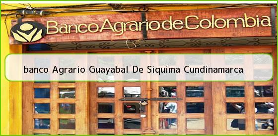<b>banco Agrario Guayabal De Siquima Cundinamarca</b>
