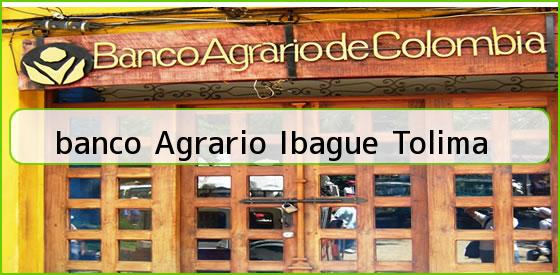<b>banco Agrario Ibague Tolima</b>
