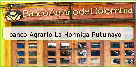 <b>banco Agrario La Hormiga Putumayo</b>