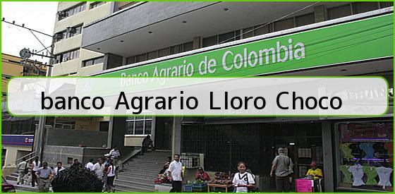 <b>banco Agrario Lloro Choco</b>