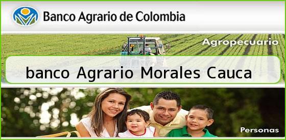 <b>banco Agrario Morales Cauca</b>