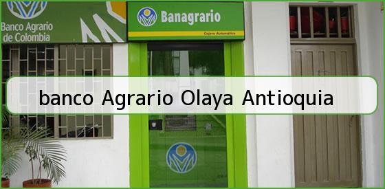 <b>banco Agrario Olaya Antioquia</b>