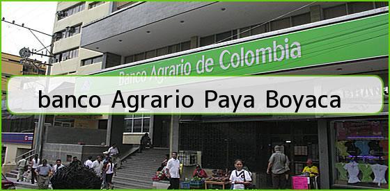 <b>banco Agrario Paya Boyaca</b>