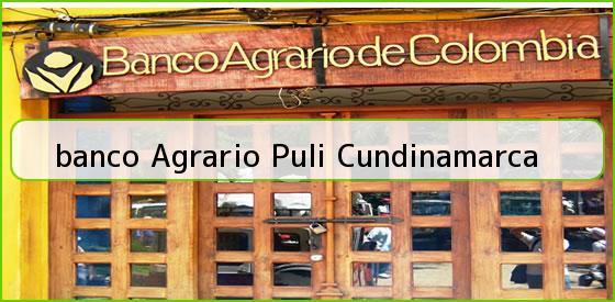 <b>banco Agrario Puli Cundinamarca</b>