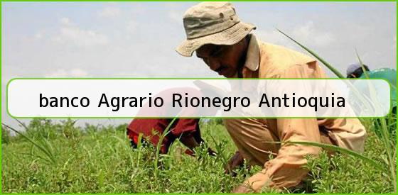 <b>banco Agrario Rionegro Antioquia</b>
