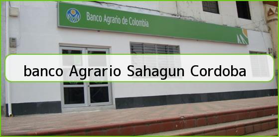 <b>banco Agrario Sahagun Cordoba</b>
