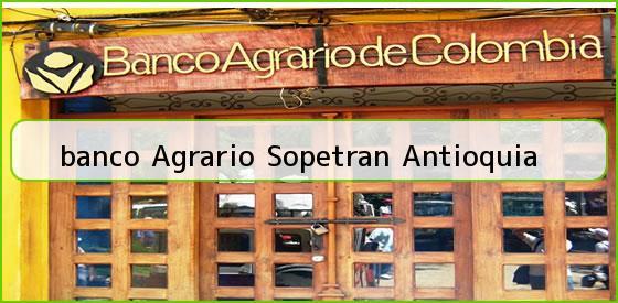 <b>banco Agrario Sopetran Antioquia</b>