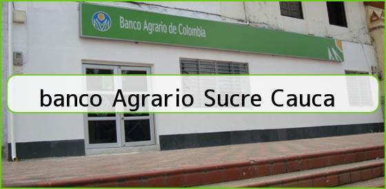 <b>banco Agrario Sucre Cauca</b>