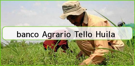 <b>banco Agrario Tello Huila</b>