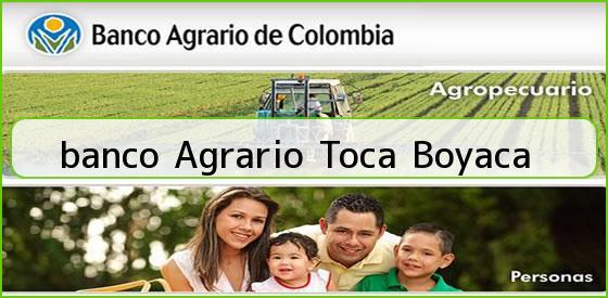 <b>banco Agrario Toca Boyaca</b>