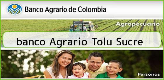 <b>banco Agrario Tolu Sucre</b>