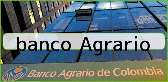<u>banco Agrario</u>