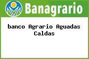 <i>banco Agrario Aguadas Caldas</i>
