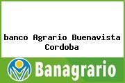 <i>banco Agrario Buenavista Cordoba</i>